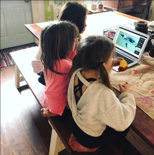 Three girls sitting on a bench watching a video of a penguin swimming on a laptop