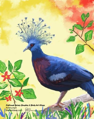 Painting of Victoria Crowned Pigeon by Maria DeSimone Pracsak