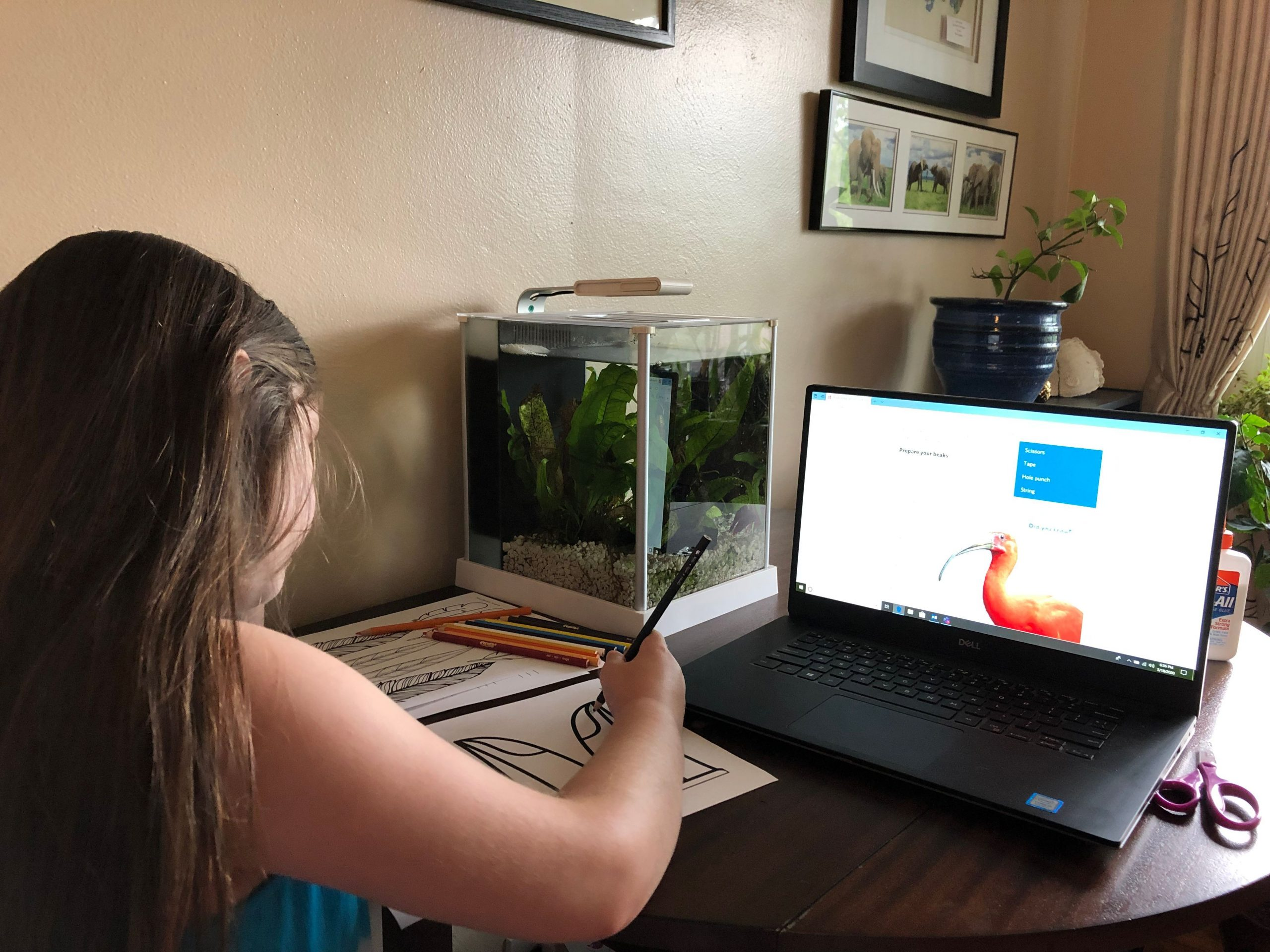 Girl doing an activity in front of a computer with a bird on the screen